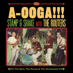 Aooga Stamp And Shake With The Routers