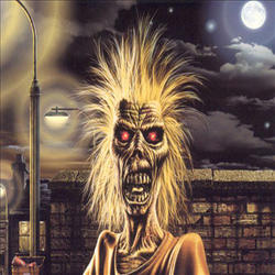 IRON MAIDEN - Iron Maiden (limited Edition Picture Disc)